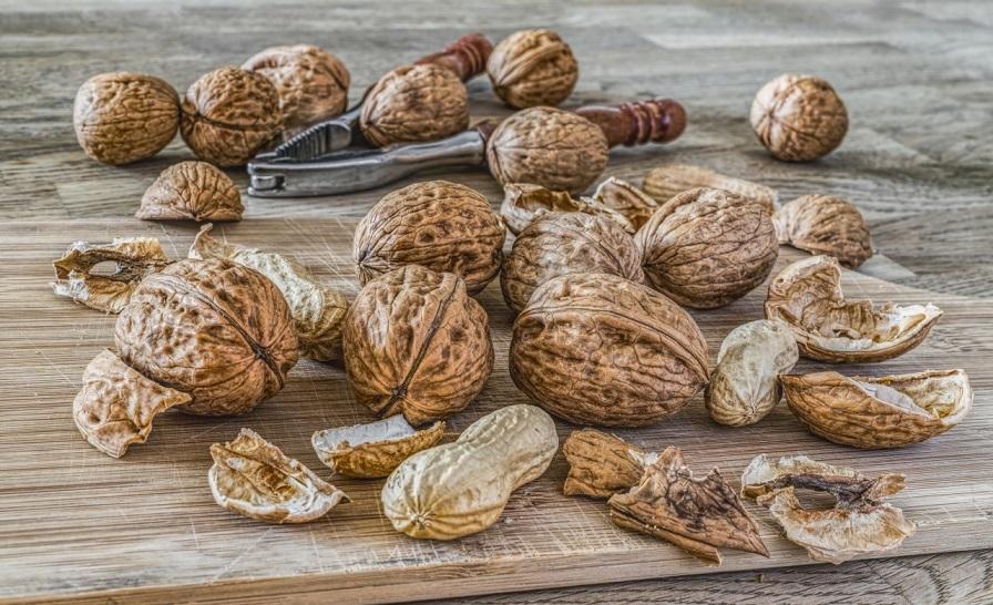 Allergies et Intolérances alimentaires aux oléagineux