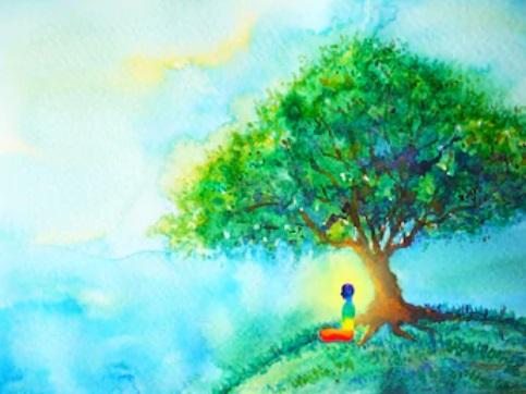 se ressourcer au pied d'un arbre